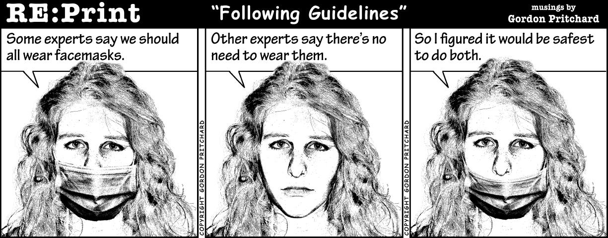 545 Following Guidelines.jpg
