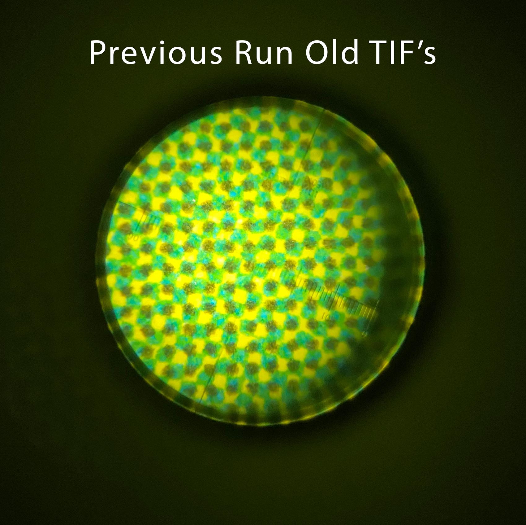 previous---old-tif.jpg